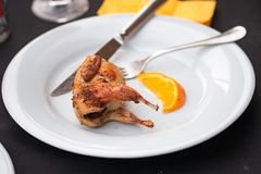 Fried quail on a white plate royalty free stock photos