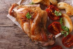 Fried rabbit leg with apples and tomatoes top view horizontal Royalty Free Stock Photos