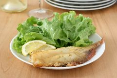 Fried red-fish with salad Stock Images