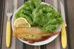 Fried red-fish with salad Royalty Free Stock Photography