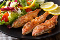 Fried red mullet with fresh vegetable salad and lemon close-up. Stock Photo