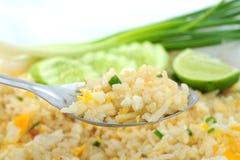 Fried Rice Royaltyfri Foto
