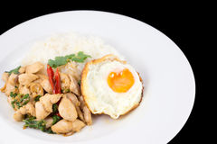 Fried rice basil. Fried rice with basil chicken and fried egg stock photos