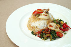 Fried rice with basil and squid Stock Image