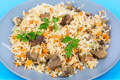 Fried rice with beef on a plate. Stock Images