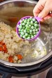 Fried Rice casalingo fatto in vaso istantaneo immagine stock libera da diritti