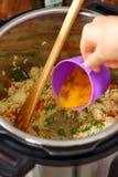 Fried Rice caseiro feito no potenciômetro imediato imagens de stock