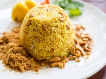 Fried rice with Cashews nuts. On plate Stock Image