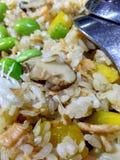 Fried Rice di verdure delizioso Fotografie Stock Libere da Diritti