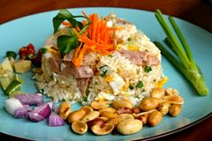 Fried rice with fermented sausage Royalty Free Stock Photos