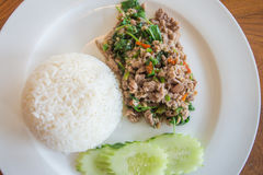 Fried rice with meat Royalty Free Stock Photography