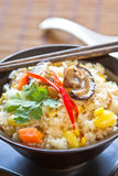 Fried rice with mushroom,sweet corn and carrot Stock Image