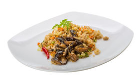 Fried rice with mushrooms Stock Photography