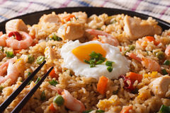 Fried rice nasi goreng with chicken and shrimp macro horizontal Royalty Free Stock Photography