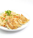 Fried Rice With Fried Dumplings Set Royalty Free Stock Photography