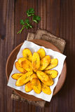 Fried Ripe Plantain Slices fotografia stock