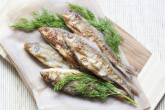 Fried river fish and dill on a paper on a wooden background Royalty Free Stock Photo