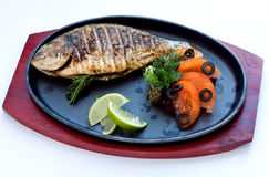 Fried river fish a grill Royalty Free Stock Photos