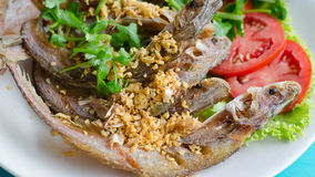 Fried River Fish With Garlic And Pepper Stock Photo