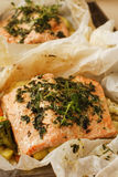 Fried roasted salmon with rosemarry in wrapped paper Stock Images
