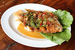 Fried ruby fish topped with sweet,sauer and hot sauce Stock Photography