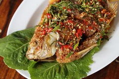 Fried ruby fish topped with sweet,sauer and hot sauce Royalty Free Stock Image