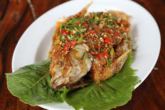 Fried ruby fish topped with sweet,sauer and hot sauce Royalty Free Stock Images