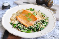 Fried salmon with brown rice, spinach and leguminous kidney bean Royalty Free Stock Images