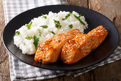 Fried salmon in a honey-soy glaze and rice close-up. horizontal Royalty Free Stock Images