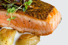 Fried salmon with potatoes vegetarian lunch Royalty Free Stock Photography