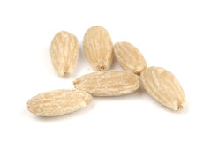 Fried salted almonds Stock Photos