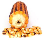 Fried salted corns Stock Image