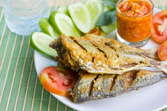 Fried salted fish Stock Photos