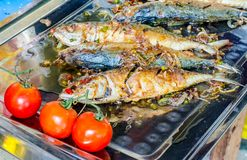 Fried salted fish and red potatos on plate Royalty Free Stock Photos