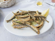 Fried sardine dish Stock Photo