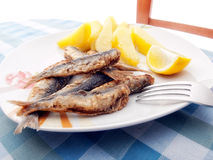 Fried sardines Royalty Free Stock Image
