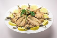 Fried sardines. A plate of fried sardines with lemon stock images