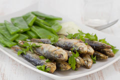Fried sardines with boiled green beans Royalty Free Stock Photos