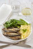 Fried sardines with mashed potato Royalty Free Stock Photo