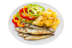 Fried sardines with potato Stock Images