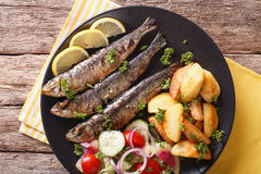 Fried sardines with potatoes and fresh vegetable salad close-up. Stock Photo