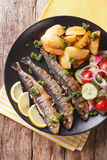 Fried sardines with potatoes and fresh vegetable salad close-up. Royalty Free Stock Photography
