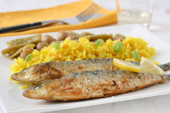 Fried sardines with rice Royalty Free Stock Photo