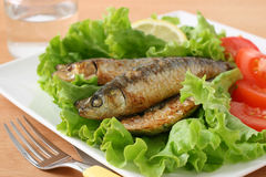 Fried sardines with salad Royalty Free Stock Images