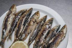 Fried sardines stock photos