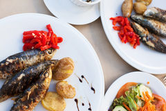 Fried sardines served with vegetables on plates Royalty Free Stock Photos