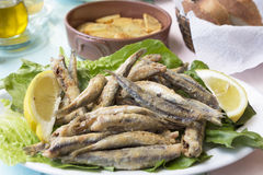 Fried sardines wth lemon pieces on a plate Stock Photography
