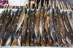 Fried saury fish Stock Photography