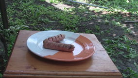 Fried sausage on a skewer. stock footage