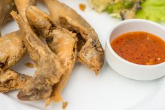 Fried scads fish on the white plate Royalty Free Stock Image